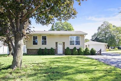 Bolingbrook Single Family Home New: 250 Cedarwood Avenue