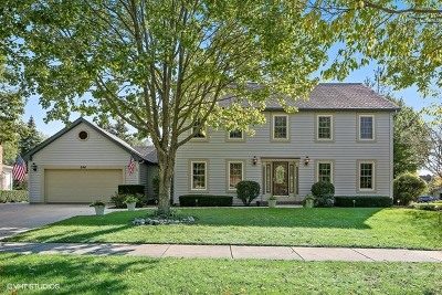 Naperville Single Family Home Contingent: 246 Waxwing Avenue