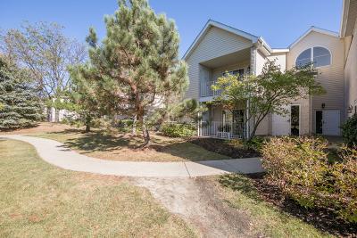 Carol Stream Condo/Townhouse Contingent: 784 North Gary Avenue #113