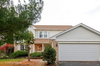 Bolingbrook Single Family Home New: 173 Beaver Creek Drive