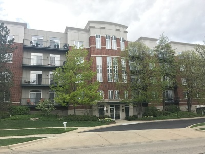 Buffalo Grove Condo/Townhouse For Sale: 840 Weidner Road #206