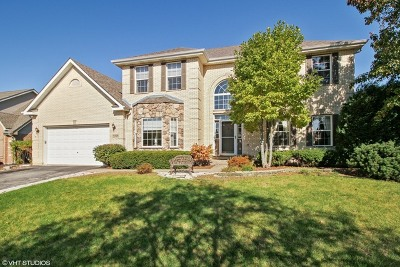 Orland Park Single Family Home New: 10424 Santa Cruz Lane