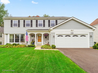 Naperville Single Family Home New: 318 Meadow Green Drive