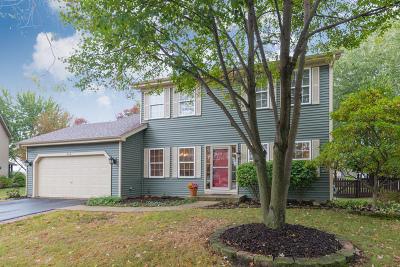 Oswego Single Family Home New: 224 Mondovi Drive