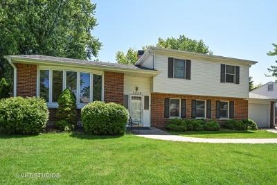 Palatine Single Family Home New: 1329 East Michele Drive