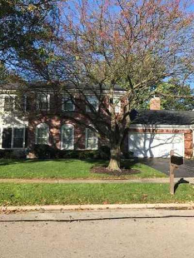 Naperville Condo/Townhouse New: 1537 Mirror Lake Drive