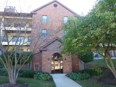 Buffalo Grove Condo/Townhouse For Sale: 671 Hapsfield Lane #207