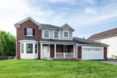 Bolingbrook Single Family Home New: 1 Plainview Court