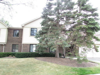 Palatine Condo/Townhouse New: 839 East Coach Road #7