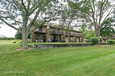 Fox Lake Condo/Townhouse For Sale: 65 Aspen Colony #3