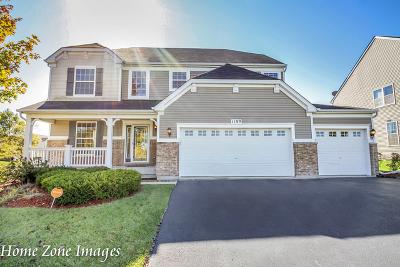 Joliet Single Family Home For Sale: 1109 Hummingbird Circle