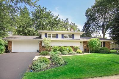 Naperville Single Family Home New: 409 Tupelo Avenue