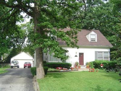 Elmhurst Single Family Home New: 256 North Glenview Avenue