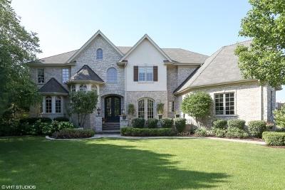 Burr Ridge Single Family Home For Sale: 8521 Johnston Road