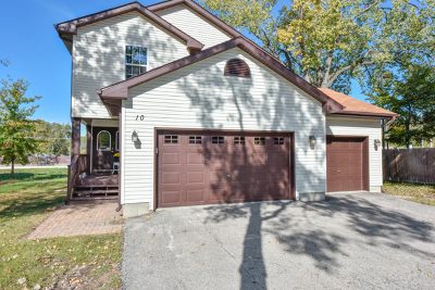 Fox Lake Single Family Home For Sale: 10 Matts Road