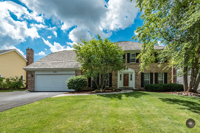 Naperville Single Family Home New: 1370 Green Trails Drive