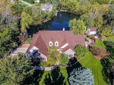 Du Page County, Kane County, Kendall County, Will County Single Family Home New: 31 Lakeside Court