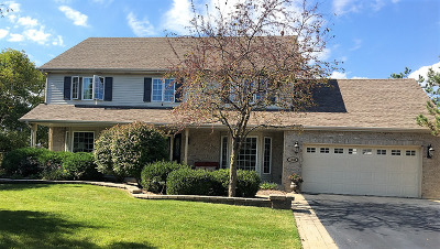 Naperville Single Family Home New: 1143 Tuscany Lane