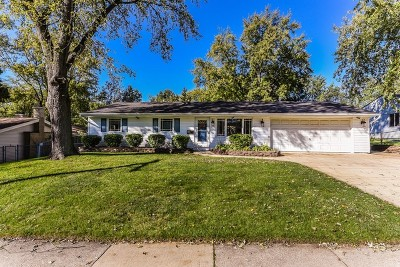 Schaumburg Single Family Home For Sale: 134 South Springinsguth Road