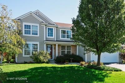Plainfield Single Family Home New: 12921 Terrace Boulevard