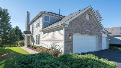 Plainfield Condo/Townhouse New: 24015 Pear Tree Circle