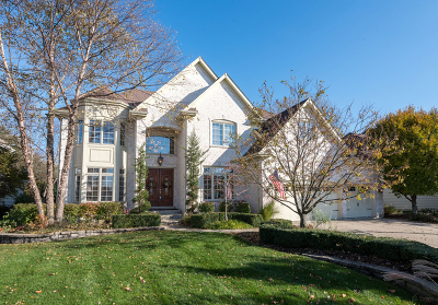 Naperville Single Family Home New: 3024 Kelltowne Court