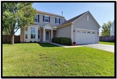 Bolingbrook Single Family Home New: 1 Prairieview Court