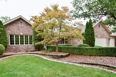 Orland Park Single Family Home For Sale: 10728 Buck Drive