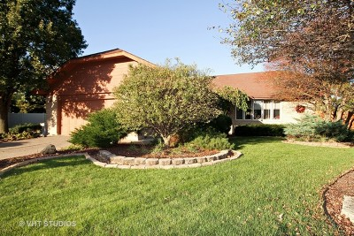 Tinley Park Single Family Home For Sale: 6024 Jacquelyn Court