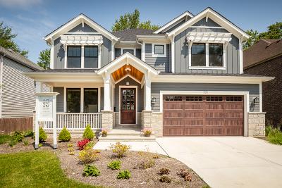 Elmhurst Single Family Home New: 221 East Madison Street