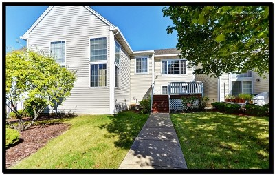 Bolingbrook Condo/Townhouse New: 365 Magnolia Court #365