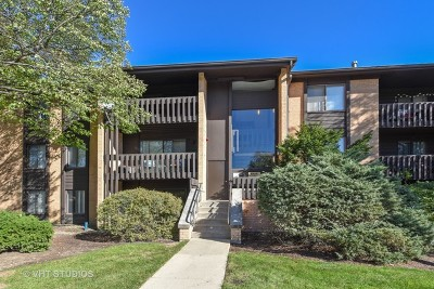 Willowbrook Condo/Townhouse Contingent: 6105 Knoll Valley Drive #23-304