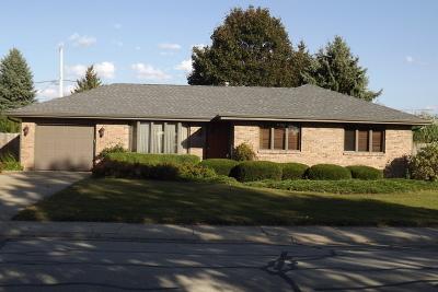 Plainfield Single Family Home New: 15423 South Pratt Lane