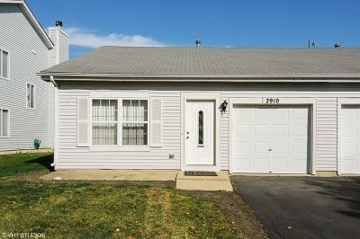 Naperville Condo/Townhouse New: 2910 Cedar Glade Drive