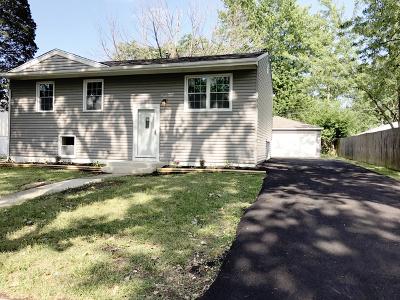 Steger Single Family Home New: 3631 Susan Lane