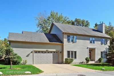 Mundelein Single Family Home For Sale: 19801 West West Shore Drive
