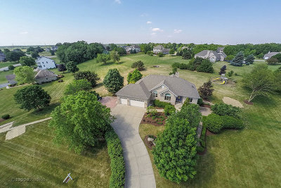 Elgin Single Family Home New: 10n796 Oak Ridge Drive