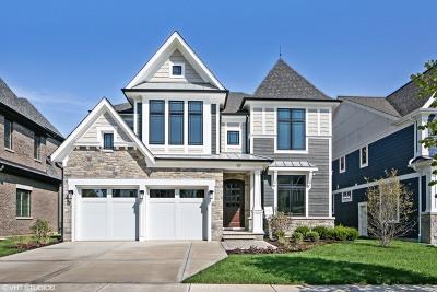 Elmhurst Single Family Home For Sale: 117 Joanne Way