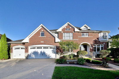 Naperville Single Family Home New: 3376 Hollis Circle