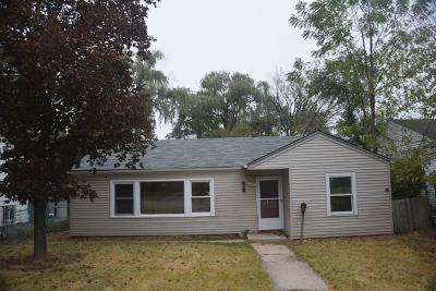 Mundelein Single Family Home For Sale: 416 East Oak Street
