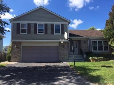 Carol Stream Single Family Home For Sale: 440 Stonewood Circle
