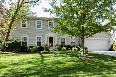 Naperville Single Family Home New: 704 Muirhead Court