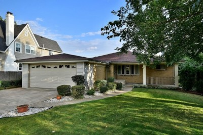 Clarendon Hills Single Family Home New: 23 Chestnut Avenue