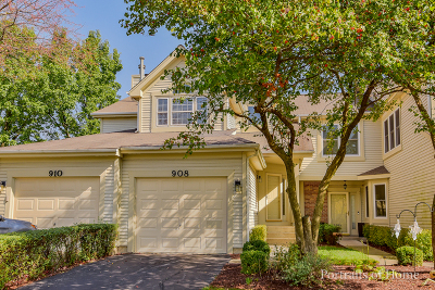 Naperville Condo/Townhouse New: 908 Prospect Court #908