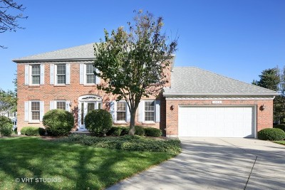 Naperville Single Family Home New: 1025 Stanton Drive