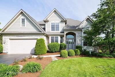 Elburn Single Family Home New: 622 Avon Court