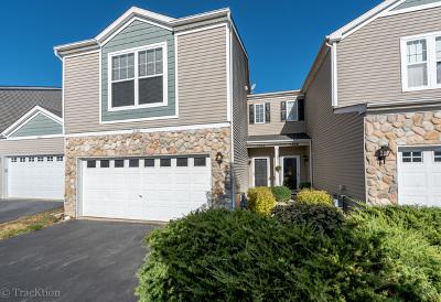 Condo/Townhouse New: 3966 Blackstone Drive #3966