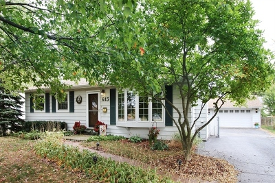 Crystal Lake IL Single Family Home New: $139,500