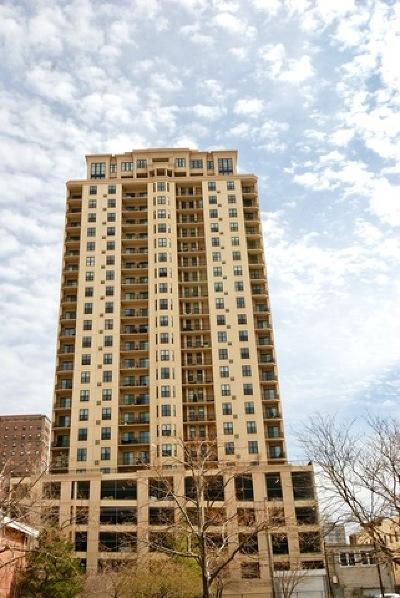 Chicago Condo/Townhouse New: 1464 South Michigan Avenue #2206