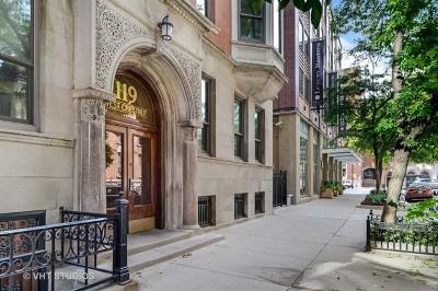 Chicago Condo/Townhouse New: 119 West Chestnut Street #2E